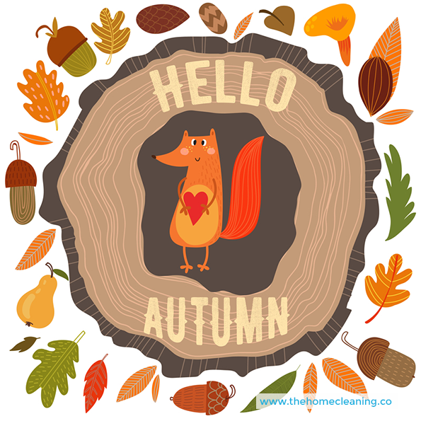 Hello Autumn :)